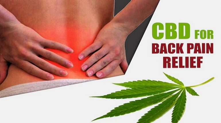 CBD_for_back_pain_relief