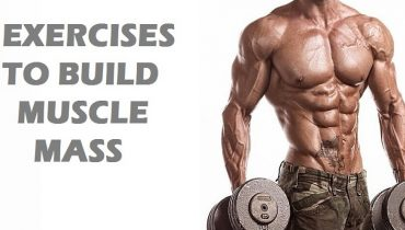 Exercises to Build Muscle